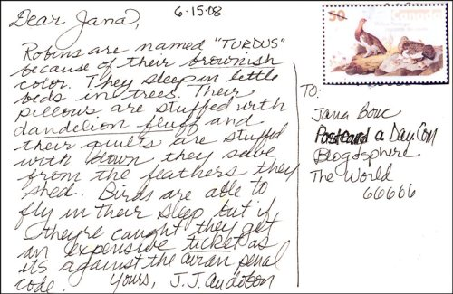 Postcard from Audubon